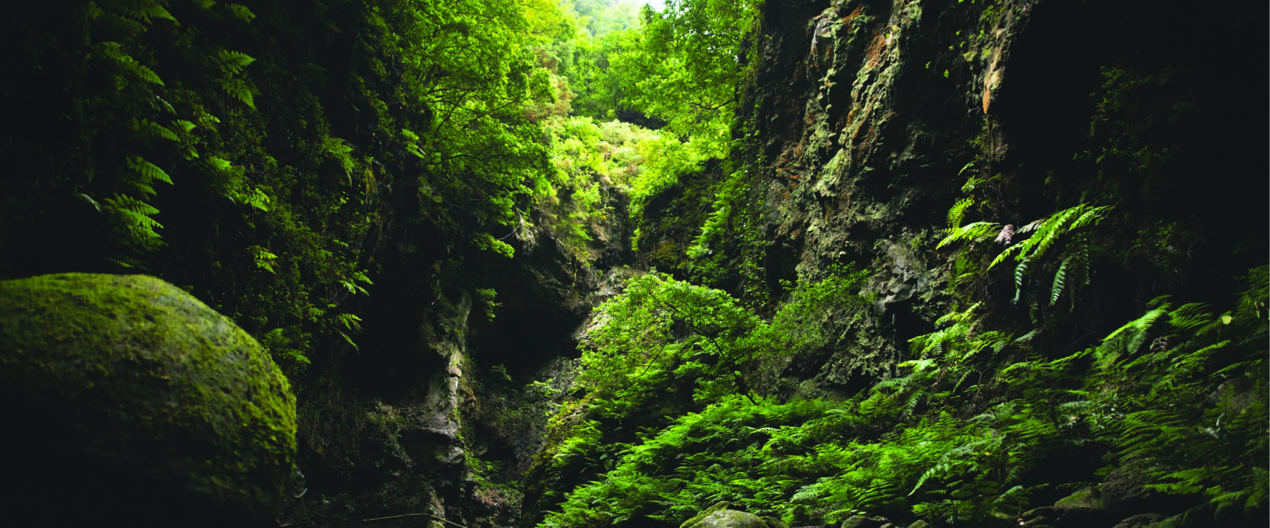 Geo-environmental case study